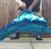 Arikajira Dolphin Balloon Crush Wellies - a wonderful video of me crushing a foil dolphin shaped...
