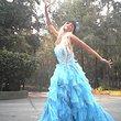 Magestic Princess Disney in the Road