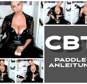 CBT Anleitung mit Paddle