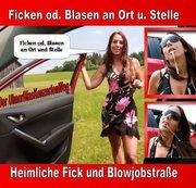 Ficken od. Blasen an Ort u. Stelle, Der UlmerBlaskonzertenWeg