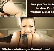 Wichsfix - Her mit der Morgenlatte!