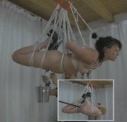 Suspension Hook und Gewichte 2