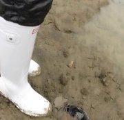 Meine Ex Lieblings Sneaker werden von wetlook Gummistiefel erledigt / Schlamm - nichts für Weichling