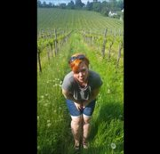 Pipi in den Weinbergen