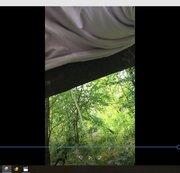 Pissen in Wald