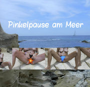 NS 9 ML: Pinkelpause am Meer