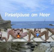 NS 9 ML: Pinkelpause am Meer