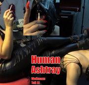 Mein Human Ashtray - Wollmaus Teil III