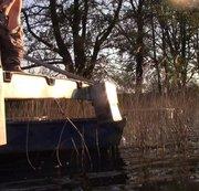 FREAKART: im Bogen ins Wasser gepisst Download
