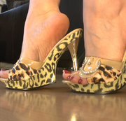 Fuss- und Schuhfetisch- Mule High Heels