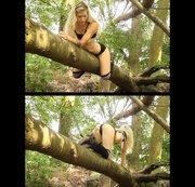 Ein wildes Kätzchen im Wald [KEIN TON!]