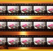 Profilvideo