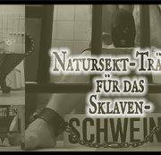 Natursekt-Tränke für das Sklavenschwein