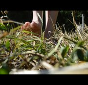 Ach einfach schön nackte Füsse im Gras