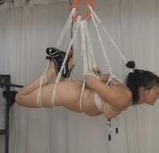 Suspension, Hook und Gewichte