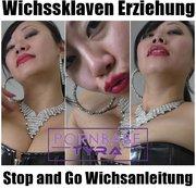 Wichssklaven Erziehung - Stop and Go Wichsanleitung
