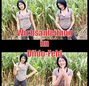 Wichsanleitung im Dildo-Feld