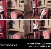 Brutales Caning durch Miss B